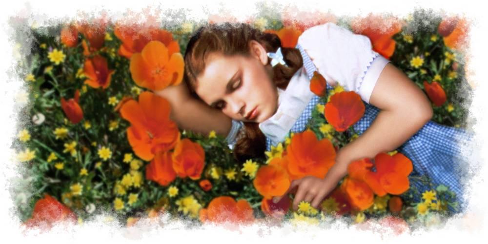 Dorothy durmiendo