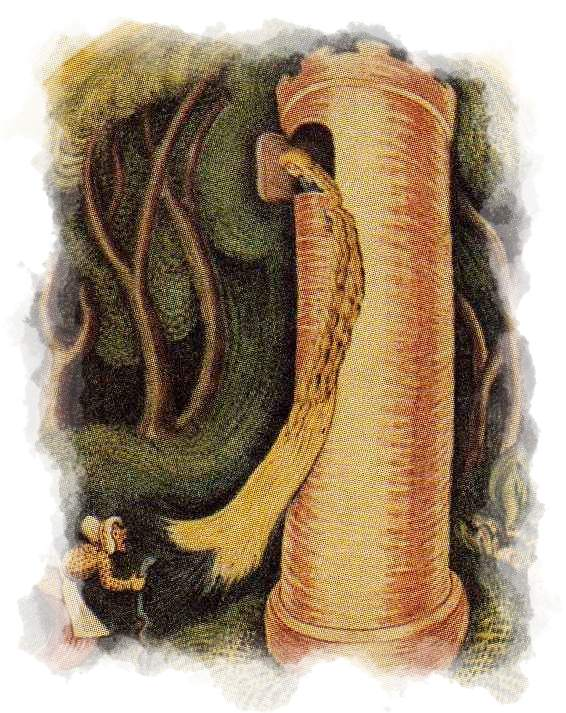 La bruja escala por el pelo de Rapunzel